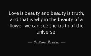 Buddha Quotes about Beauty