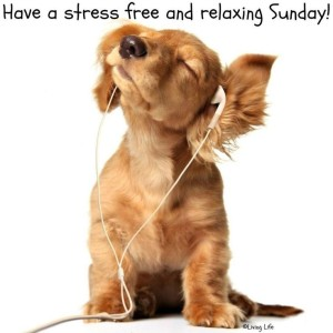 Cute Relaxing Sunday Quotes Images