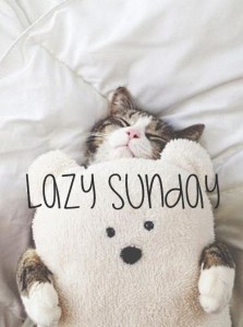 Lazy Sunday Quotes images