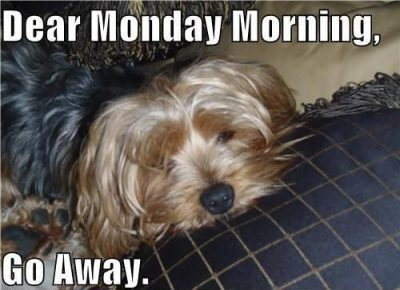 Monday Morning Images