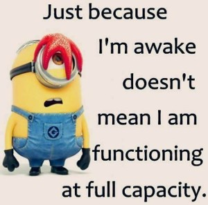 funny-minions-quotes-pictures