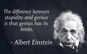 Albert Einstein Quotes about Stupidity