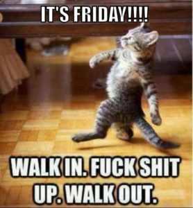 tgif funny quotes