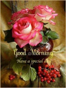 Collection Of Best Good Morning Cards Hd