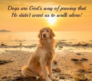 Amazing quotes about Dog and God IMages