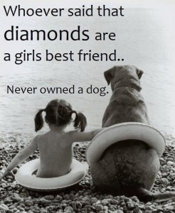 Best Quotes about Dog Love with IMages