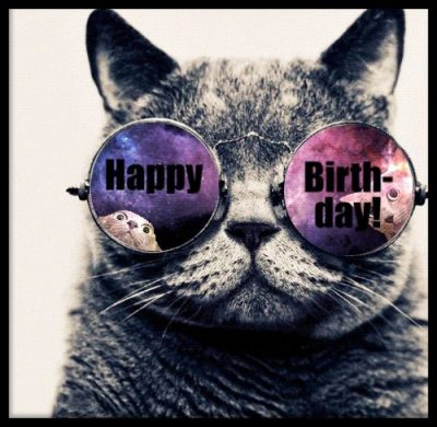Funny Birthday Cat Images