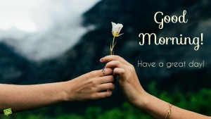 Good Morning n Have a Great Day Wishes IMages