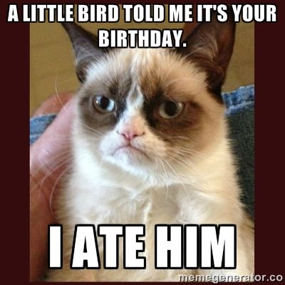 Happy Birthday Cat Memes for him