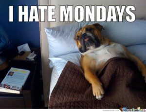 I Hate Monday Meme