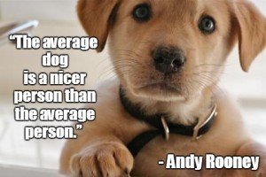 Love for Dog Quotes with Pictures