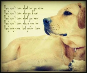 Quotes about Dog and Faithfulness Images