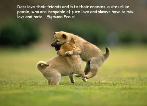 Quotes about Dogs and People wallpapers