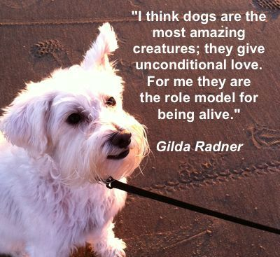Quotes about Dogs in your Life Images
