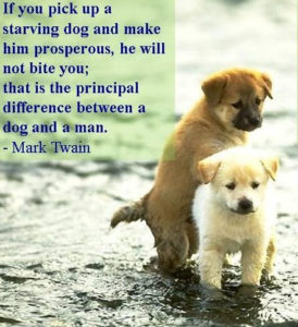 Quotes about Pet Dogs