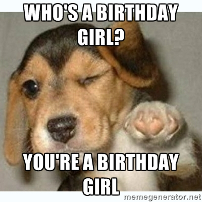 dog birthday meme