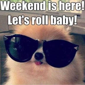 roll on the weekend quotes