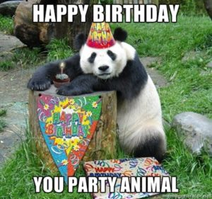 Funny Animal Happy Birthday Images