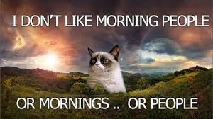 Funny Good Morning Pictures and Quotes