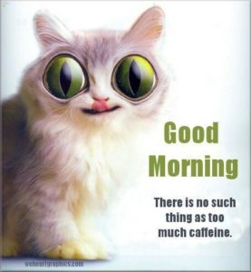 Funny Good Morning Quotes with Pictures
