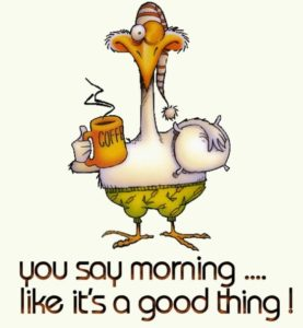 Quotes Good Morning Funny