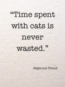 Dr. Sigmund Freud Quotes about Cats