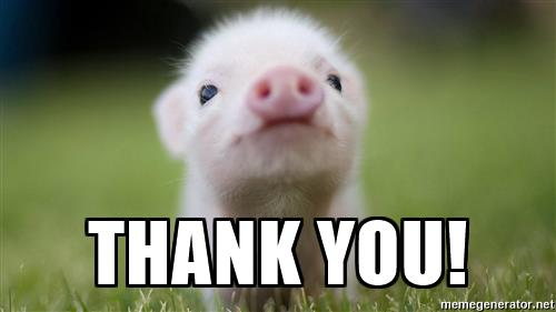 Image result for cute animal saying thank you