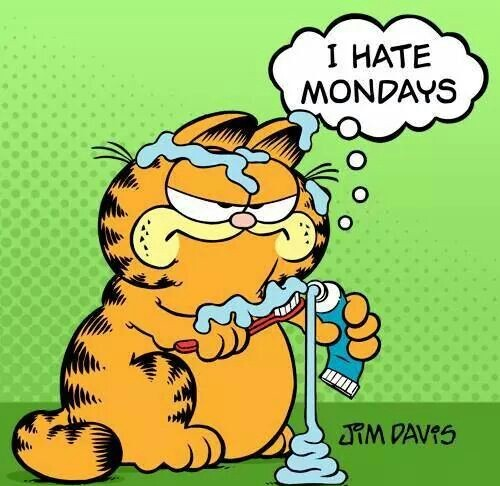 50 Garfield I Hate Mondays Quotes Images Pics