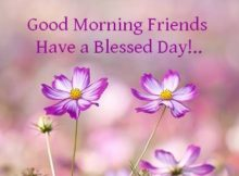 Have a great blessed day Quotes