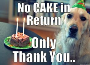Thank you Birthday Meme dog