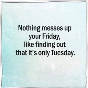 Best Tuesday Morning Funny Quotes