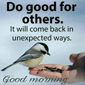 Fresh Good morning quotes and Wishes