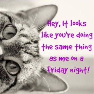 Funny Happy Friday Night Quotes