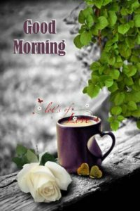Good Morning Wishes and Greetings