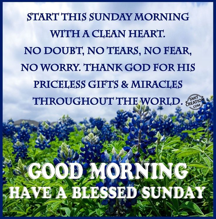 101 Inspirational Blessed Sunday Quotes Sayings And Images