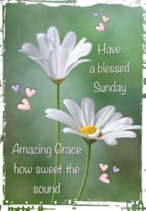 Have a blessed sunday Photos