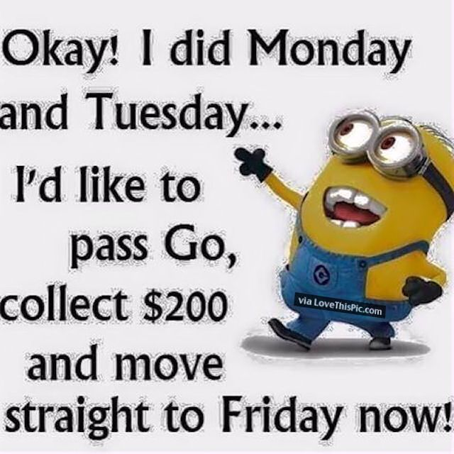 50+ Amazing Tuesday Morning Funny: Quotes, Images & Memes