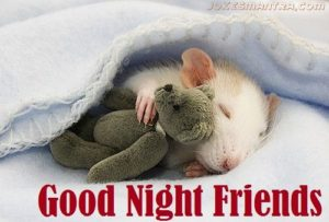 Cute good night images for Facebook