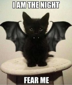 awesome halloween captions