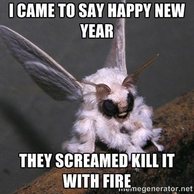 Happy New Year Meme Pic