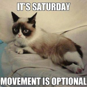 Funny Quotes about Saturday Morning