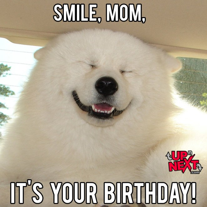 61funniest happy birthday mom meme
