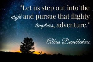 Dumbledore Quotes Adventure