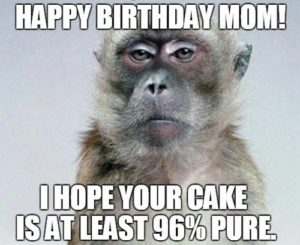 Happy Birthday Memes Mom