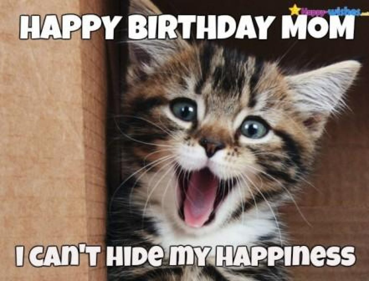 61+Funniest Happy Birthday Mom Meme
