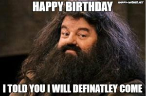 Harry Potter Happy Birthday Meme Hagrid