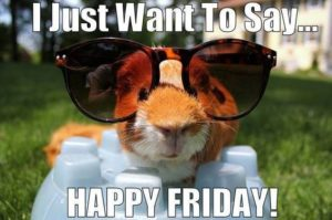 Its Friday Funny Quotes