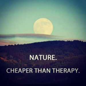 Quote about Nature n Life