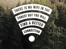 Quotes about Life with Nature