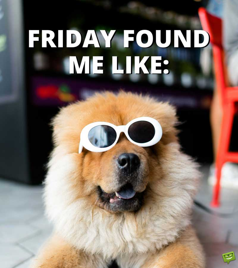 Its Friday Funny Quotations: Most Funny Friday Quotes, Sayings & Images